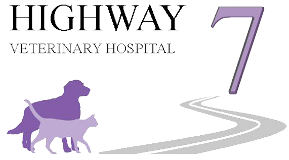 Highway 7 Vet Hospital
